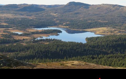 Enkeltpersoner, lag og foreninger, interessegrupper og regionale forvaltningsnivå har ytret seg om Sjøsetervatnet som drikkevannskilder for Skei. GD viser utdrag fra alle som har gitt høringsinnspill til Gausdal kommune.