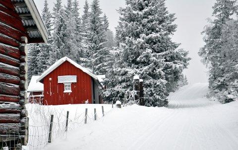 Høgkorsplassen:  Siste lørdag med åpent denne vintersesongen