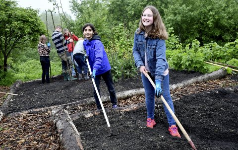 HØNE-PØNE: Aisha (til venstre) og Alva sprer gjødsel utover bedene i skolehagen på Nedre Opsahl gård.