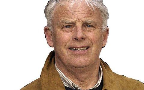 Arild Johnsen, Moss