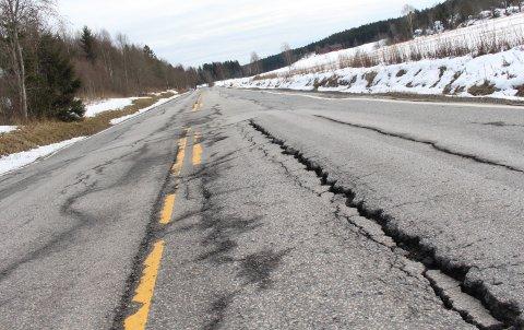FORFALLER: Fylkesvei 115 mellom Skjønnerød og Sæbyvannet i Våler er i svært dårlig stand.
