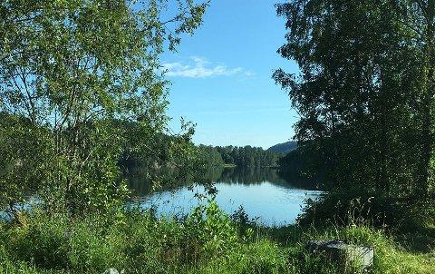 IKKE BADBAR NÅ: Gjersjøen er drikkevannskilde for Oppegård og Ås, men mange bader også i innsjøen. Nå er det bakterier i vannet, som gjør at kommunen fraråder bading for øyeblikket.