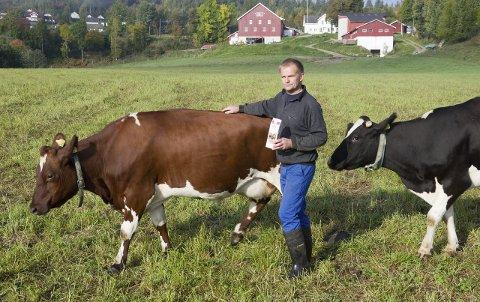 Bonde og ordfører: Sammen med kona Marit har Knut Olav Omholt på gården Hjerpeland i Lardal levert elitemelk til Tine i 21 av 22 år. Slike kvalitetskrav krever at en følger med og ikke sover.arkivfoto