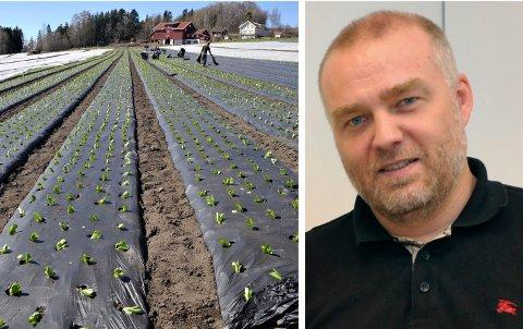 SMITTE PÅ GARTNERI: Flere ansatte ved Elstøen gartneri AS på Røyse i Hole er rammet av koronasmitte. Kommuneoverlege Bernt Ivar Gaarder og smitteteamet jobber med smittesporing.