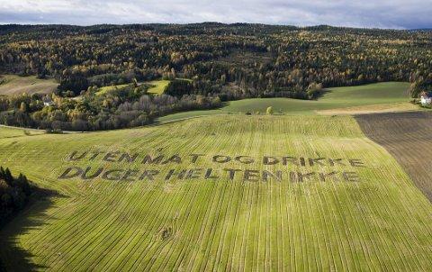 Ordtak: Mange av Landart-verkene er ordtak som er laget med plog. Her fra Rustad gård.
