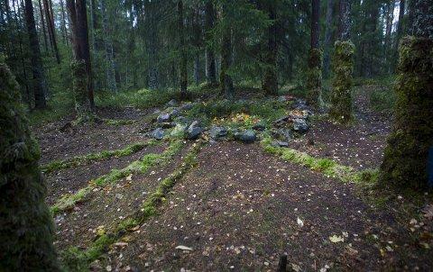 Skog: Elevene ved kulturskolen har laget kunstverket de har kalt «Skogsportal til en hemmelig verden».