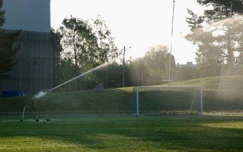 NATTEVANNING: IL ROS vanner nintimer hver natt. Det får folk til å reagere. - Vi må vannet for at ikke gresset p banen skal dø, sier leder i  fotballgruppa, Bjarte Grostøl.