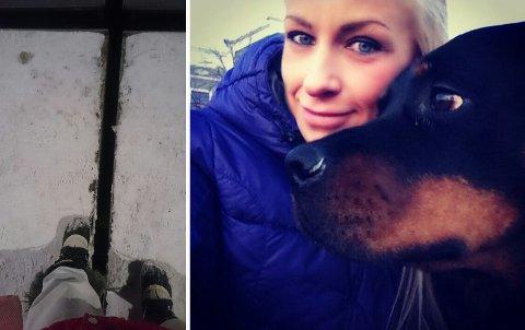 SKADET SEG PÅ GANGBRUA: Hunden Toja skadet seg da hun og Lise gikk tur over gangbrua. Toja satte fast det ene bakbeinet i glippa mellom bruklaffene.