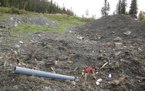 Bamselisvingen: Litt forskjellig å finne nede i snøtippområdet sør for Beitostølen. Her fra tidligere år. Snødeponiet ligger rett ved et myrområde og ei mindre elv.