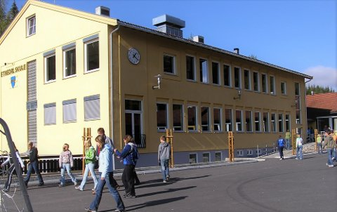 Friskes opp: Administrasjonen i Etnedal kommune vil friske opp fargene på Etnedal skule. Samtidig ønsker politikerne mer næringsareal i kommunen.