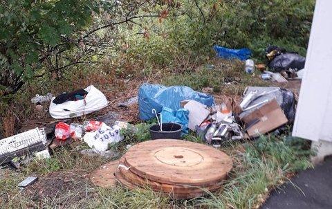 POLITISAK:Søppelet som er dumpet rett i grøfta ved en bussholdeplass på Li i Søndre.