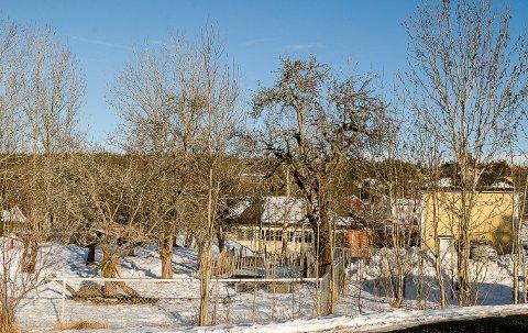 Fruktbare Fjellstrand: Eplehagen barnehage bærer navnet med rette, dersom de gamle frukttrærne på haugen beholdes ved siden av barneskolen som skimtes bak. Uansett er det nå vedtatt at det skal bygges en barnehage med fem avdelinger her med åpning høsten 2022, hvis alt går som planlagt. Alle foto: Staale Reier Guttormsen
