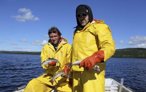 Sik etter sik: Rørosfiske AS har hatt mange gode fiskesomre på Aursunden.. Her Morten Holden (t.v.) og Stein Eriksen (t.h.) fra sommeren 2016.