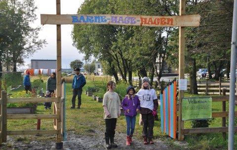 Bodin 4H-gård har hatt barnehagehage siden 2017, men det spørs om det blir i år.