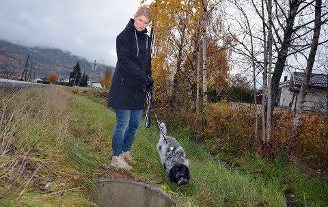 HER: Kumlokket var godt dekket med gress så det var ikke lett å se det, forteller Mette Finsrud Skarstad som slo ut «flapsen». Søndagens kveldsrunde med «Bella» kommer hun til å huske veeeeldig lenge. ALLE FOTO: STIG ODENRUD