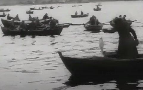 BREMANGERPOLLEN: Ei kvinne dreg opp ein torsk i båten medan karane rundt omkring følgjer med.