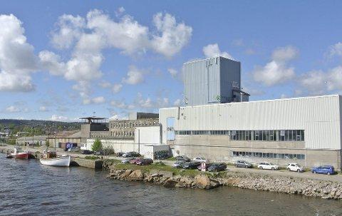 NTP-tomten blir et fremtidig vekstsenter: Fredrikstad kommune eier tomten. Når festetiden går ut, vil det nye eiendomsutviklingsselskapet utvikle området og sørge for inntekter. (Arkivfoto: Øivind Lågbu)