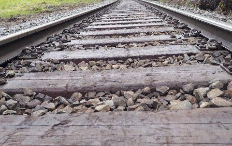 Ser mot nord: Finland har sett på flere alternativer for jernbane til mulige havner i Norge og Russland. Narvik var ett av disse. Nå ønsker man å gå videre med Kirkenes-alternativet, og i dette arbeidet skal Norge delta. Foto: Terje Næsje