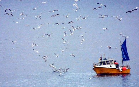 Viktig: – Kystens hjerteslag er taktfaste som alltid. Vi gleder oss til å fortsette å kjenne på kystpulsen, og ønsker hele landet velkommen i samtalen om havet, skriver Therese Rist og Jan-Gunnar Winther i dette innlegget.