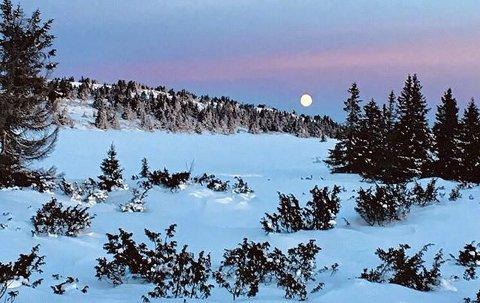 VINNERBILDET: Iskald skitur på Nordseter mens supermånen bygger seg opp. Foto: Marit Slang Stauri