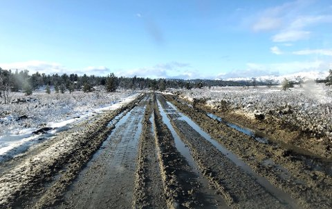 Vegen har ikke vært istandsatt etter anleggsvirksomheten på Kvamsfjellet  Slik så vegen ut i oktober i 2019.