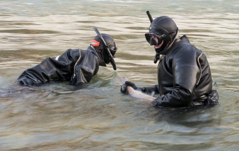 På jakt etter oppdrettslaks: Dykkere fra NORCE Research Center avbildet under forrige ukes tokt i Opo. – Vårt mål er å dykke langs hele vassdraget, telle antall fisk og ta ut oppdrettslaks. Så langt har vi blitt hindret av dårlig sikt, sier forsker Helge Skoglund. foto: arja Wiik-Hansen
