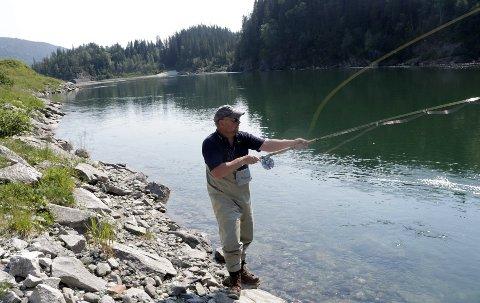 LAKSEFISKE: Fisket i Vefsna har vært lovende de siste årene, men villaksen i elva er sterkt genetisk påvirket av oppdrettslaks.