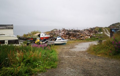 SJOKKERT OVER DETTE: Reidar Christensen ble sjokkert over  dette synet  i Dyfjord, da han dro til hjemplassen i år.