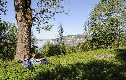 ØNSKER STERKERE NATURVERN: Erik Jacobsen - her sammen med Pernille Rød Larsen - mener mye mer av de grønne områdene må bevares på Gullaug-halvøya. Aps Tone E. Svendsen mener det er viktig å lage robuste hensynssoner rundt Linnesstranda naturreservat.