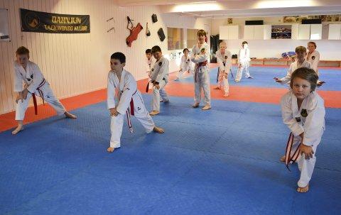 BLIR GODT TATT VARE PÅ: Dahnjun Taekwondo Klubb på Ekholt, her med Oliver Hansen Andreassen i spiss på treningen tirsdag kveld.