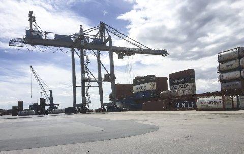 Sentral: – Moss Havn leverer viktig infrastruktur til mosseregionen og næringslivet i mosseregionen, skriver havnesjefen.