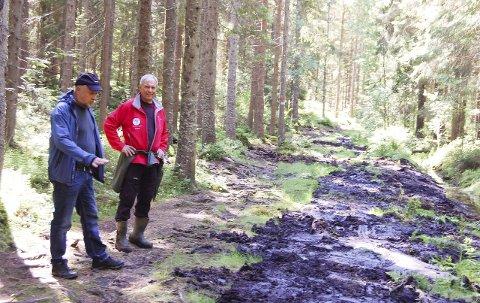 GJØRMEBAD: Stikkledning skal lede bort vannet, underlaget er planert og så legges det flis på toppen, forteller Reidar Haugen (til høyre) og Bjørn Ekornås.FOTO: METTE KVITLE
