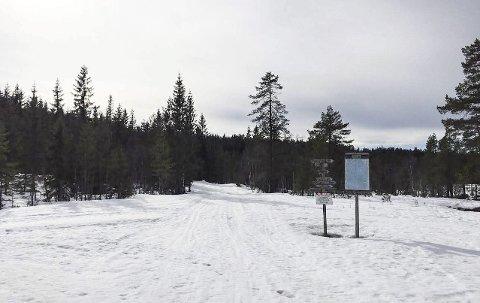Gode skiløyper: Det er fortsatt overraskende godt skiføre på Vindfjell og mulighetene for en påsketur er absolutt til stede. Dette bildet ble tatt på Viddaseter forrige torsdag og her ligger det i hvert fall en halv meter snø.foto: ole wiik