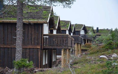 REAGERER. Knut Arne Søsveen reagerte da ordføreren i Løten oppfordret engasjerte i saken om å lese seg opp og besøke Budor.