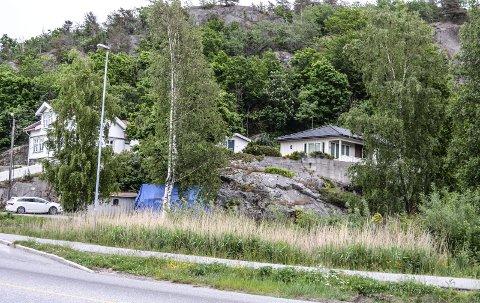 FJELLVIK: Utbygging av denne åsen innebærer at eksisterende boliger forsvinner.