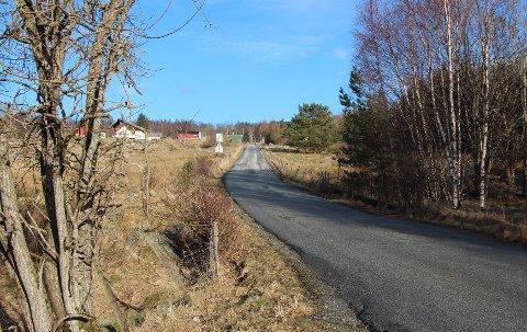NEI: Kommunen har sagt nei til nydyrking på et areal ved Leitevegen like ovenfor bebyggelsen på Jørpeland. Nå skal politikerne vurdere en klagesak.