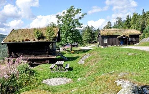 SPENTE: På Hogstul i Tuddal er de spente på hva som skjer med pågangen etter utleiehytter etter at regjeringen kom med nye reiseråd fra 15. juli, som blant annet betyr at tyskerne igjen kan dra på ferie til Norge.