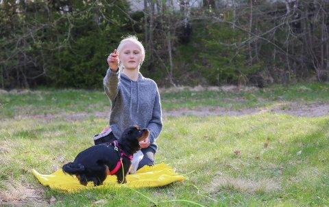 Koronahund: Takket være pandemien fikk Ellen Haugli Gundersen (13) oppfylt hundedrømmen sin. Hver tirsdag er hun og Luna på valpekurs i regi av Tvedestrand hundeklubb, og de fleste deltakerne sier det samme: – Da koronaen kom, fikk vi endelig tid til å skaffe oss hund. Foto: Marianne Stene
