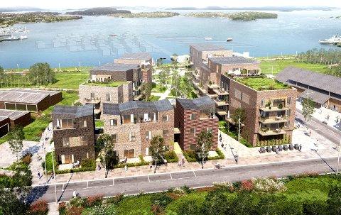 HORTEN HAVNEBY: Dette er første del av utbygingen i Indre havneby, sett fra sør og mot sjøen. Til venstre nærmeste nabo, Indre havn sykehjem.