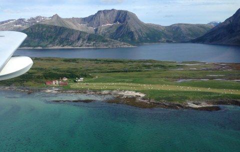 Korona-pandemien synliggjør hvordan en desentralisert struktur og produksjon i mindre og spredte enheter er et fortrinn, her representert ved Kvalnes i Steigen. Mye av dette har gått tapt i Norge. Kan vår tids største krise snu utviklinga?