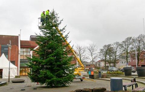 Hærverk: Juletreet i Randaberg sentrum har blitt utsatt for hærverk to ganger.