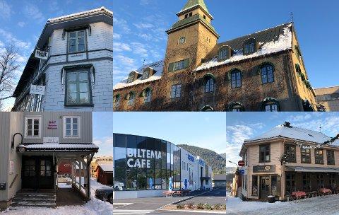 Disse spisestedene var blant de som ble kontrollert av Mattilsynet i november og desember 2020.