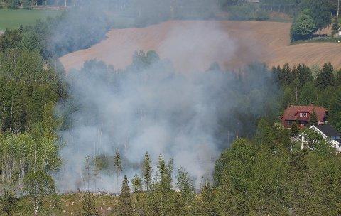 BRANN I HOGSTFELT: Mye røyk og falmmer som stadig blusset opp flere steder var godt synlig fra Blistentoppen, noen hundre meter unna åstedet.