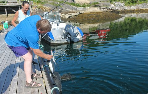 Helgeland fjordferie tyske turister fisketurisme Robert Guggenmoos og Rita Guggenmoos