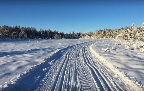 Drømmeforhold: Bildet er tatt på Kjølen tidligere denne uka.