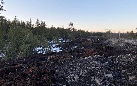 IKKE GÅ HER: Skogområdet på Toppen er ikke til å kjenne igjen. Nå ber entreprenøren folk holde seg unna anleggsområdet.