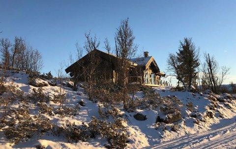 HYTTA: Slik ser hovedhuset til hytta som snart er til salgs i Nørstebølia i Uvdal ut. I tilegg kommer annekset, som rommer en egen leilighet. Nørstebølia ligger på rundt 1.000 meter over havet, rett vest for fv. 40 på vei opp til Vasstulan og Dagalifjell.