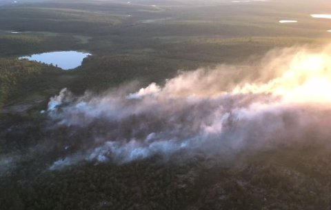 TØRT VÆR: Det er tørt vær i Nord-Norge og fare for brann. Selv et glasskår i marka kan være opphavet til at en skog blir stående i flammer.