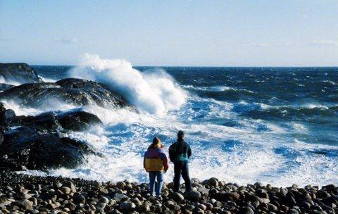 VIND: Det vil blåse godt de neste to dagene. Om ikke annet kan det gi gode naturopplevelser på Mølen.