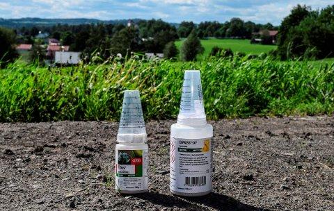 TOK FEIL FLASKE: Toten-bonden tok feil flaske med plantevernmiddel. Konsekvensen ble ihjelsprøyting av 750 dekar korn og et avlingstap på en million kroner. Foto: Sæmund Moshagen